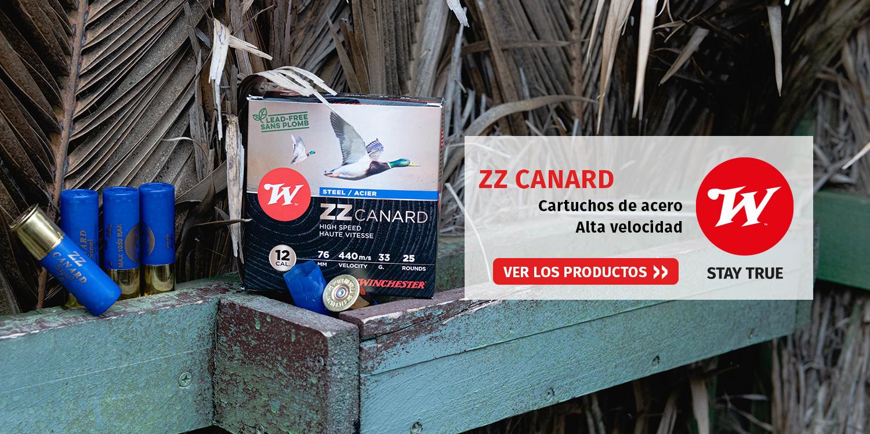 ZZ Canard